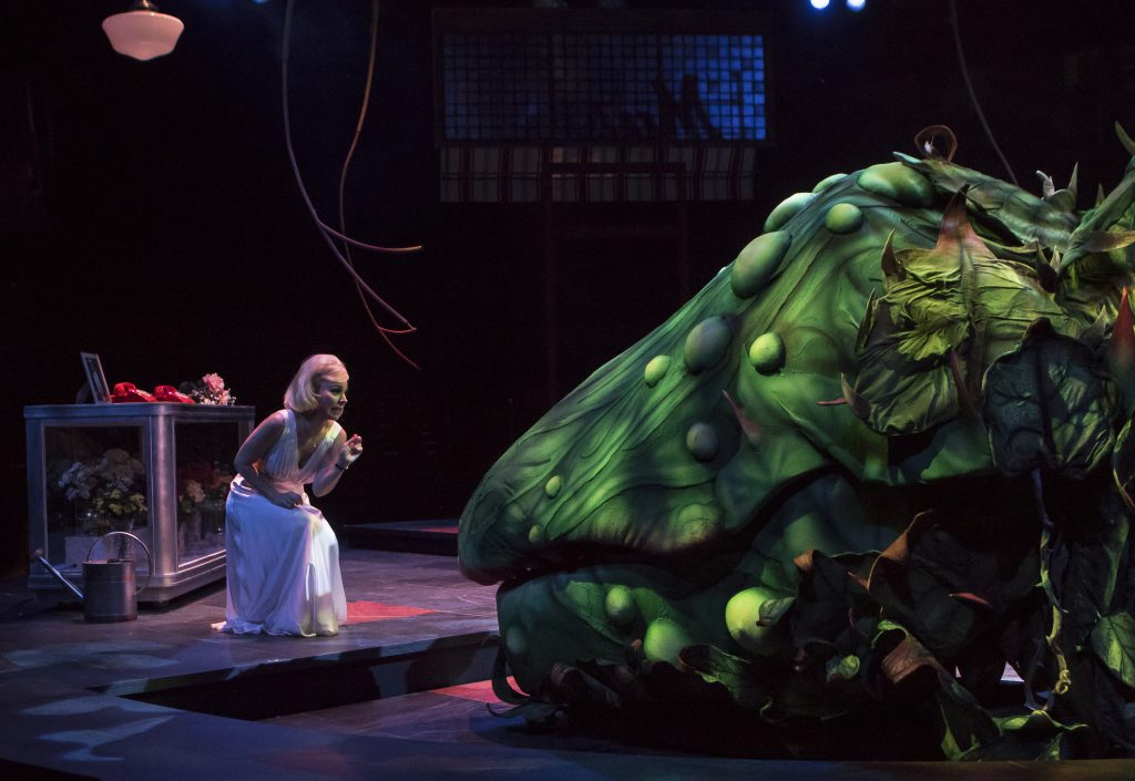 Sara Litzsinger as Audrey in LITTLE SHOP OF HORRORS produced by Broadway At Music Circus at the Well