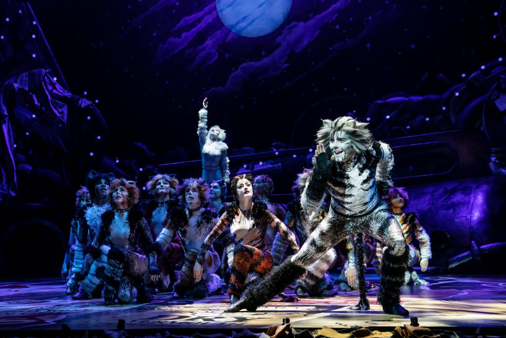 Dan Hoy as 'Munkustrap' in the Broadway On Tour presentation of CATS at the Sacramento Community Center Theater Apr. 2 – 7, 2019. Photo by Matthew Murphy.