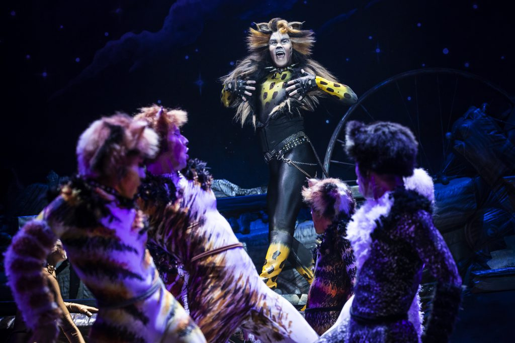 McGee Maddox as 'Rum Tum Tugger' in the Broadway On Tour presentation of CATS at the Sacramento Community Center Theater Apr. 2 – 7, 2019. Photo by Matthew Murphy.