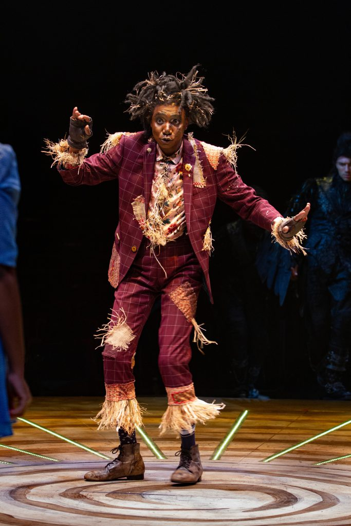 Kevin Smith Kirkwood as Scarecrow in THE WIZ produced by Broadway At Music Circus at the Wells Fargo Pavilion August 6-11. Photo by Kevin Graft.